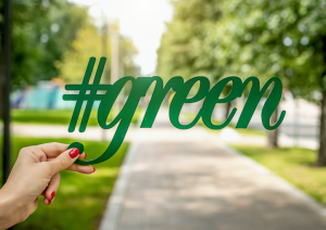 go green at home in Los Angeles